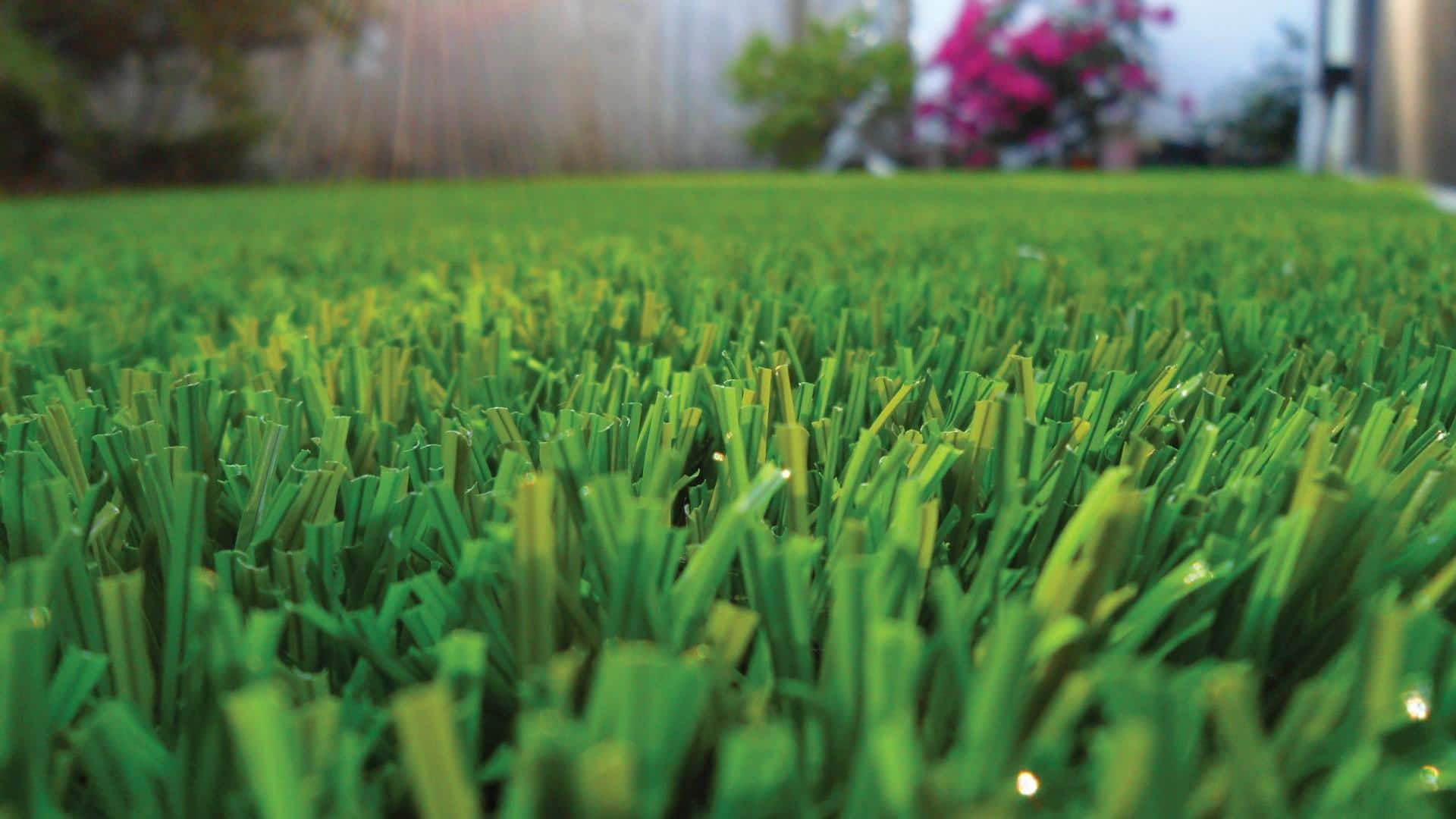 Turf Cleaning Phoenix and Surrounding Areas – Your Investment Needs to be Protected