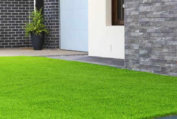 Artificial Turf After Reblooming Service